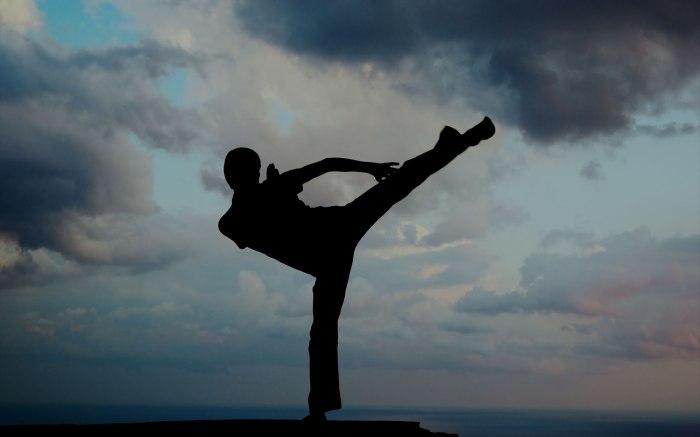 kung-fu-kick